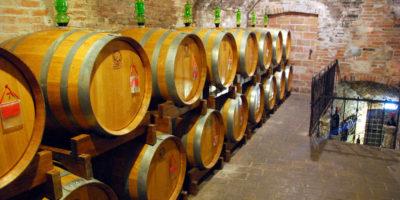 Azienda agricola vinicola al Lago di Garda. Lusso di... vino!